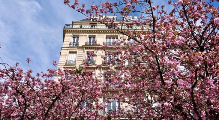 prix au mètre carré d'une rénovation à Paris 15 Vaugirard